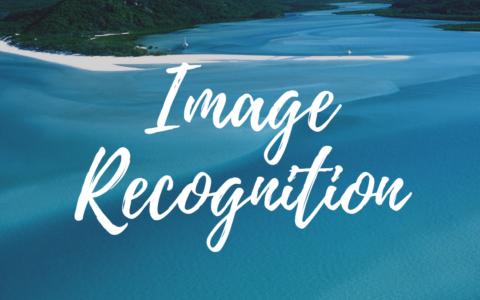 画像認識できるチャットボットをGoogle Vision APIとLINE BOTで作る