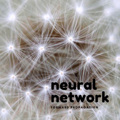 機械学習の基礎まとめ【ニューラルネットワークの推論(順方向への伝播 ...